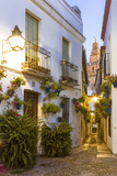 Spain, Andalusia, Cordoba. Calleja De Las Flores (Street of the Flowers) in the Old Town, at Dusk Photographic Print by Matteo Colombo