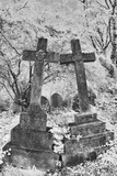 Infrared Image of the Graves in Highgate Cemetery, London, England, UK Photographic Print by Nadia Isakova