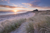 Sunrise over Bamburgh Beach and Castle from the Sand Dunes, Northumberland, England. Spring (March) Fotografie-Druck von Adam Burton