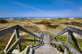 Wodden Path in the Dunes, Amrum Island, Northern Frisia, Schleswig-Holstein, Germany Photographic Print by Sabine Lubenow