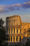 Italy, Lazio, Rome, the Colosseum Photographic Print by Jane Sweeney