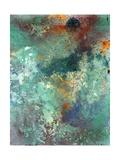 Rock Surface 1 Giclee-trykk av Rob Woods