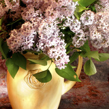 Lilac Flowers in Vase Photographic Print by Anna Miller