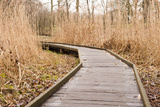 Wooden Pathway through Grass Landscape Photographic Print by  YellowPaul