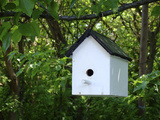 White Birdhouse Photographic Print by Anna Miller