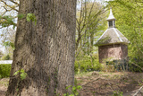 Pigeon House in Forest Scenery Photographic Print by  YellowPaul