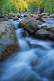 Alpine River in Autumn, Hope Valley California Photographic Print
