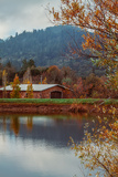 Vineyard Pond in Autumn , Calistoga Napa Valley Photographic Print