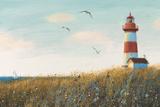 Seaside View I Art by James Wiens