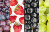 Collage of Four Summer Fruits Photographic Print by  YellowPaul