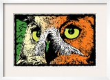Noted Owl Framed Giclee Print by Billy Perkins