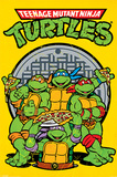 Teenage Mutant Ninja Turtles (Retro) Pósters