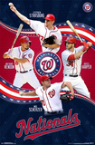 Washington Nationals - Team 15 Prints