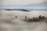 Mountain Fog Photographic Print by  vchornyy