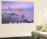 Tufa Towers on Mono Lake at Sunset, California, USA. Autumn (October) Wall Mural by Adam Burton