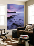 Kimmeridge Bay at Dawn, Jurassic Coast, Dorset, England. Autumn (November) Wall Mural by Adam Burton