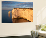 Morning Sunshine Illuminates Handfast Point on the Jurassic Coast, Dorset, England Wall Mural by Adam Burton