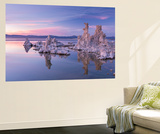 Salt Pillar Formations at Sunset, South Tufa, Mono Lake, California, USA Wall Mural by Adam Burton