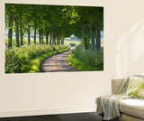Winding Tree Lined Country Lane, Dorset, England. Summer (July) Wall Mural by Adam Burton
