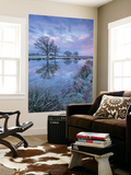 Frosty Winter Morning Beside a Rural Pond, Morchard Road, Devon, England. Winter (January) Wall Mural by Adam Burton