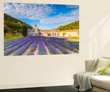 France, Provence Alps Cote D'Azur, Vaucluse. Famous Senanque Abbey in the Morning Wall Mural by Matteo Colombo