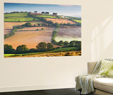 Rolling Countryside on a Misty Morning, Mid Devon, England. Autumn (September) Wall Mural by Adam Burton