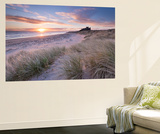 Sunrise over Bamburgh Beach and Castle from the Sand Dunes, Northumberland, England. Spring (March) Wall Mural by Adam Burton