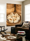 Steamed Dumplings (Steamed Bun or Xiaolongbao), Qibao, Shanghai, China Wall Mural by Jon Arnold
