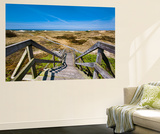 Wodden Path in the Dunes, Amrum Island, Northern Frisia, Schleswig-Holstein, Germany Wall Mural by Sabine Lubenow