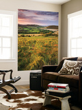 Rolling Dorset Countryside Viewed from Golden Cap, Dorset, England. Summer Wall Mural by Adam Burton