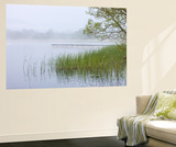 Early Morning Mist Shrouds Llangorse Lake in the Brecon Beacons National Park, Powys, Wales. Spring Wall Mural by Adam Burton