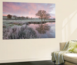 Frosty Conditions at Dawn Beside a Pond in the Countryside, Morchard Road, Devon, England. Winter Wall Mural by Adam Burton