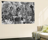 Infrared Image of the Graves in Highgate Cemetery, London, England, UK Wall Mural by Nadia Isakova