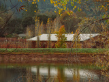 Pond House and Autumn Vineyard, Calistoga Napa Valley Metal Print by Vincent James