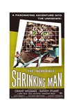 The Incredible Shrinking Man, 1957 Giclée-Druck