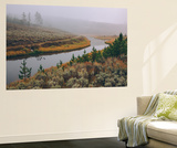 Misty Stream Through Yellowstone, Wyoming Wall Mural by Vincent James