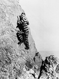 The Adventurer, 1917 Fotografisk tryk