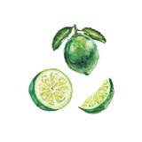 Watercolor Lime Set Poster by  lenavetka87