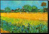 Vincent van Gogh - Pohled na Arles s kosatci Zarámovaná reprodukce na desce