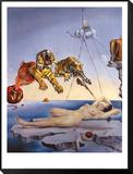 Traum, verursacht durch den Flug einer Biene um einen Granatapfel, eine Sekunde vor dem Aufwachen, ca. 1944 Gerahmter, auf Holz aufgezogener Druck von Salvador Dalí
