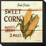 Fresh Picked Sweet Corn Ingelijste kunst op hout van David Carter Brown