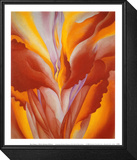 Rote Canna Framed Print Mount von Georgia O'Keeffe