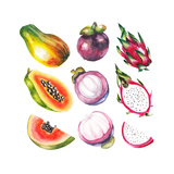 Watercolor Exotic Fruits Set Posters by  lenavetka87