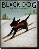 Black Dog Ski Framed Print Mount by Ryan Fowler