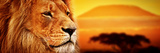 Lion Portrait on Savanna Landscape Background and Mount Kilimanjaro at Sunset. Panoramic Version Posters by PHOTOCREO Michal Bednarek