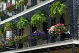 Decorative Iron Balcony Photographic Print by  dndavis