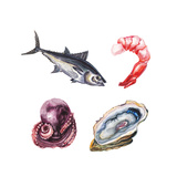 Watercolor Sea Delicacies Set Prints by  lenavetka87