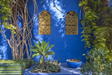 Majorelle Gardens in Marrakesh Photographic Print by  p lange