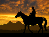 Silhouette Cowboy with Horse in the Sunset Papier Photo par volrab vaclav