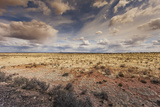 Grand Canyon National Park, Arizona Photographic Print by Curioso Travel Photography